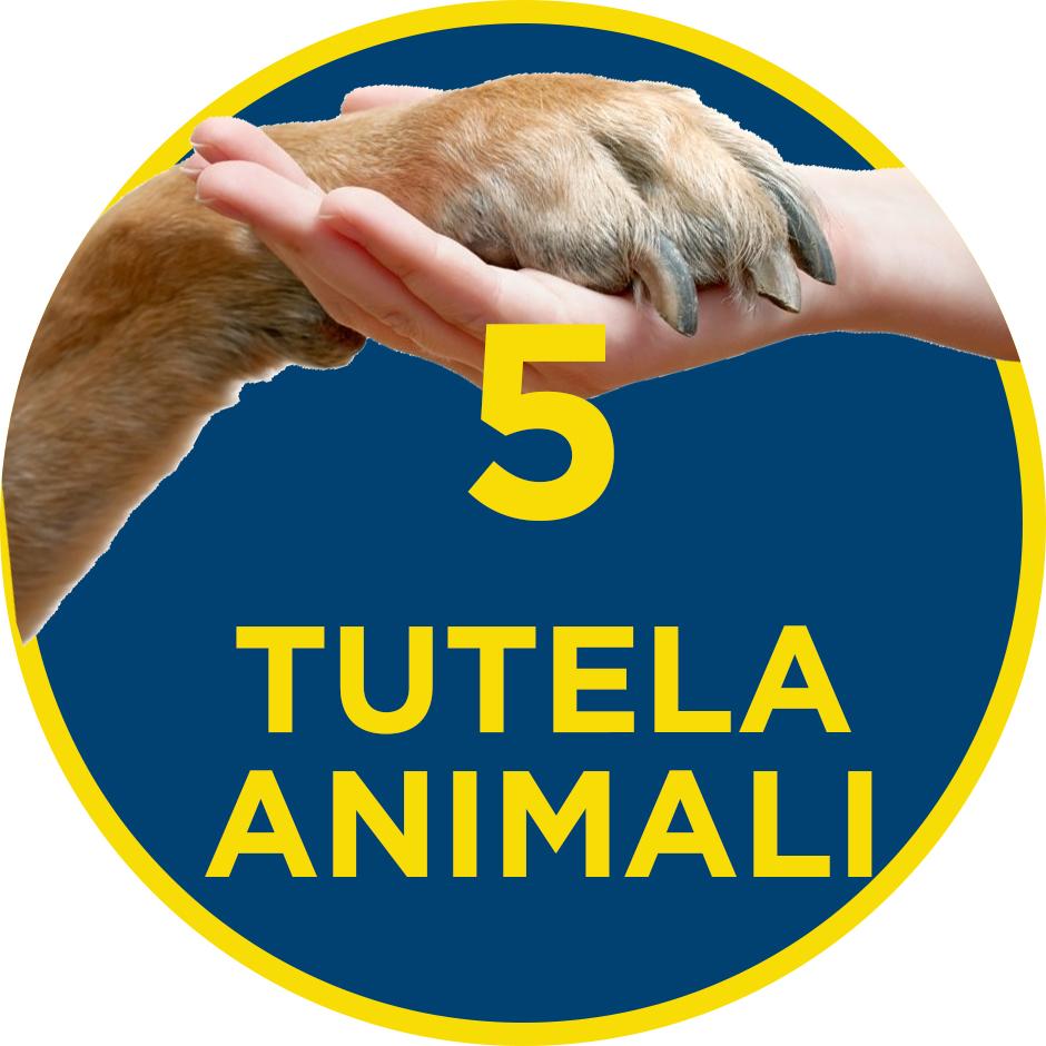 5. Tutela Animali – il programma per il Municipio VI di QUINTILLI – DEL GUERRA